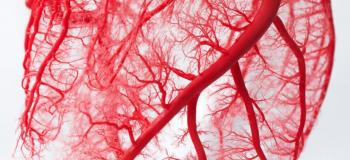 Circulatory Disease causes 20 million deaths each year